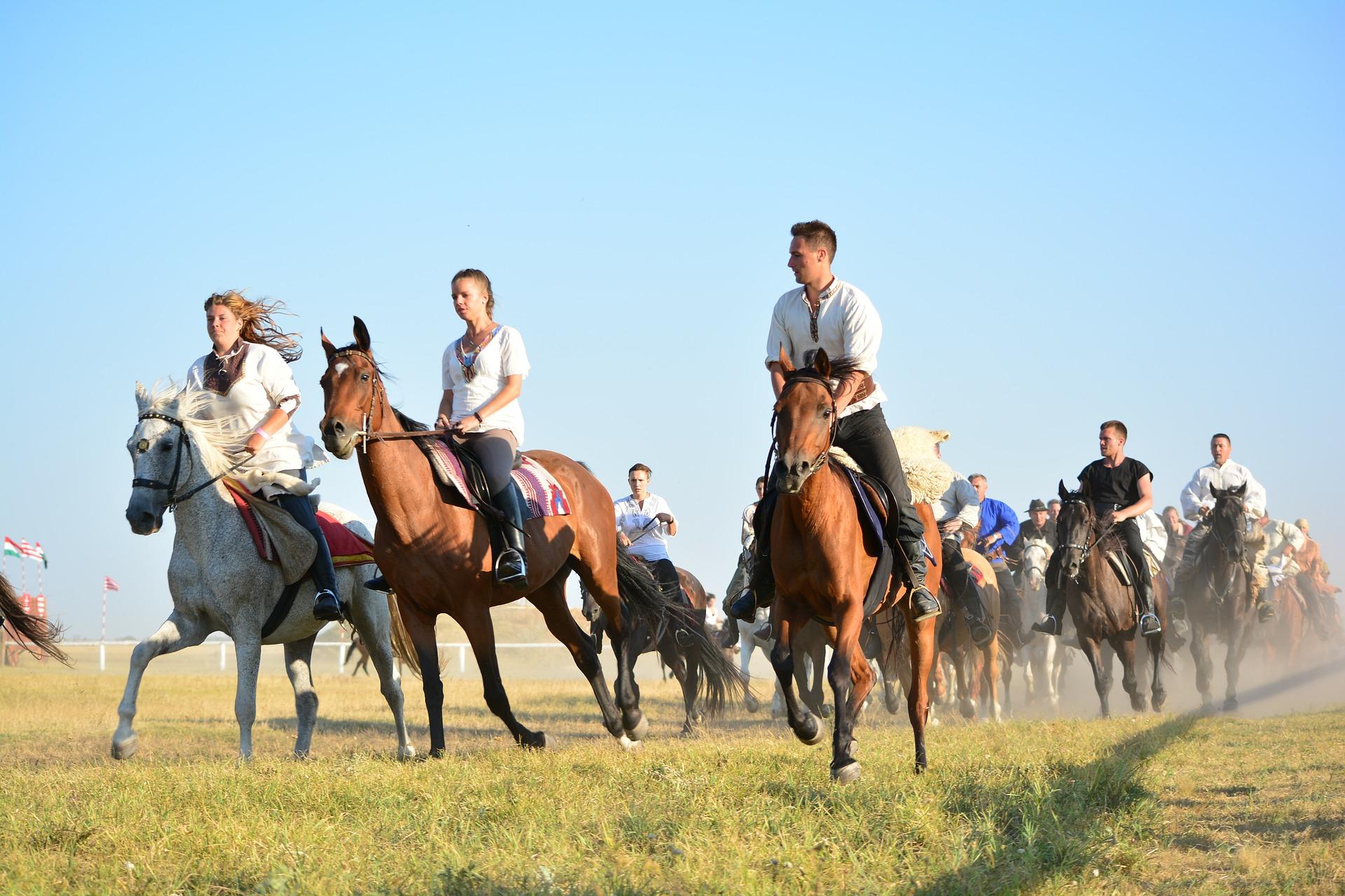 OC instruktora jazdy konnej